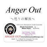 Anger Out-アンガーアウト(怒りの解放)‐