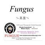 Fungus-ファンガス(真菌)-