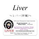 Liver-レバー(肝臓)-