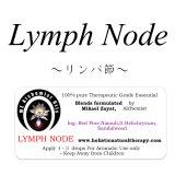 Lymph Node-リンパ・ノード(リンパ節)-