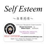 Self Esteem-セルフ・エスティーム(自尊感情)-