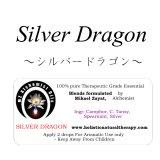 Silver Dragon-シルバードラゴン-