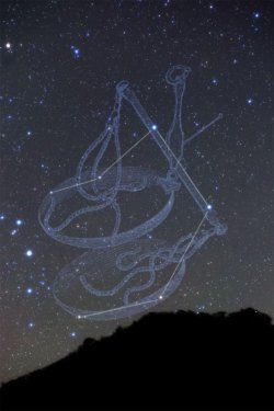 画像1: Libra-天秤座-