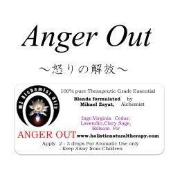 画像1: 2月のメールマガジン限定価格!! Anger Out-アンガーアウト(怒りの解放)‐