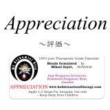 Appreciation-アプリシエイション(評価)-