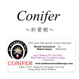 Conifer-コニファー(針葉樹)-