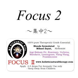 画像1: FocusII-フォーカスII(集中)-