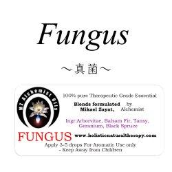 画像1: Fungus-ファンガス(真菌)-