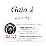Gaia II-ガイアII-