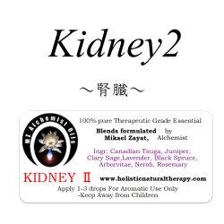 画像1: 10月のメールマガジン特別価格!!Kidney II -キドニー(腎臓 II)-