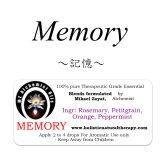 Memory-メモリー(記憶)-