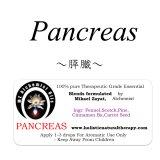 Pancreas-パンクリアス(膵臓)-
