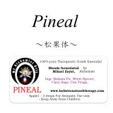 Pineal-ピニアル(松果体)-