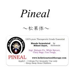 画像1: Pineal-ピニアル(松果体)-