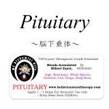 Pituitary-ピチュエタリー(脳下垂体)-