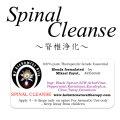 4月のメールマガジン特別価格!! Spinal Cleanse-スピナル・クレンズ(脊椎浄化)-