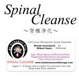 5月のセール価格!!10%オフで販売!! Spinal Cleanse-スピナル・クレンズ(脊椎浄化)-