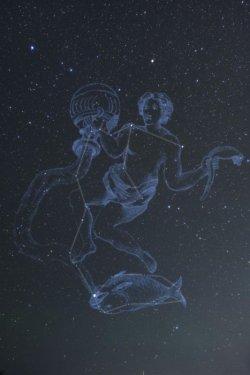 画像1: Aquarius-水瓶座-